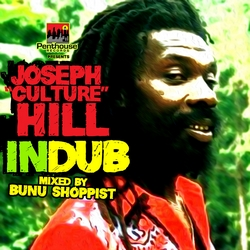 Penthouse Records - Dub compilations